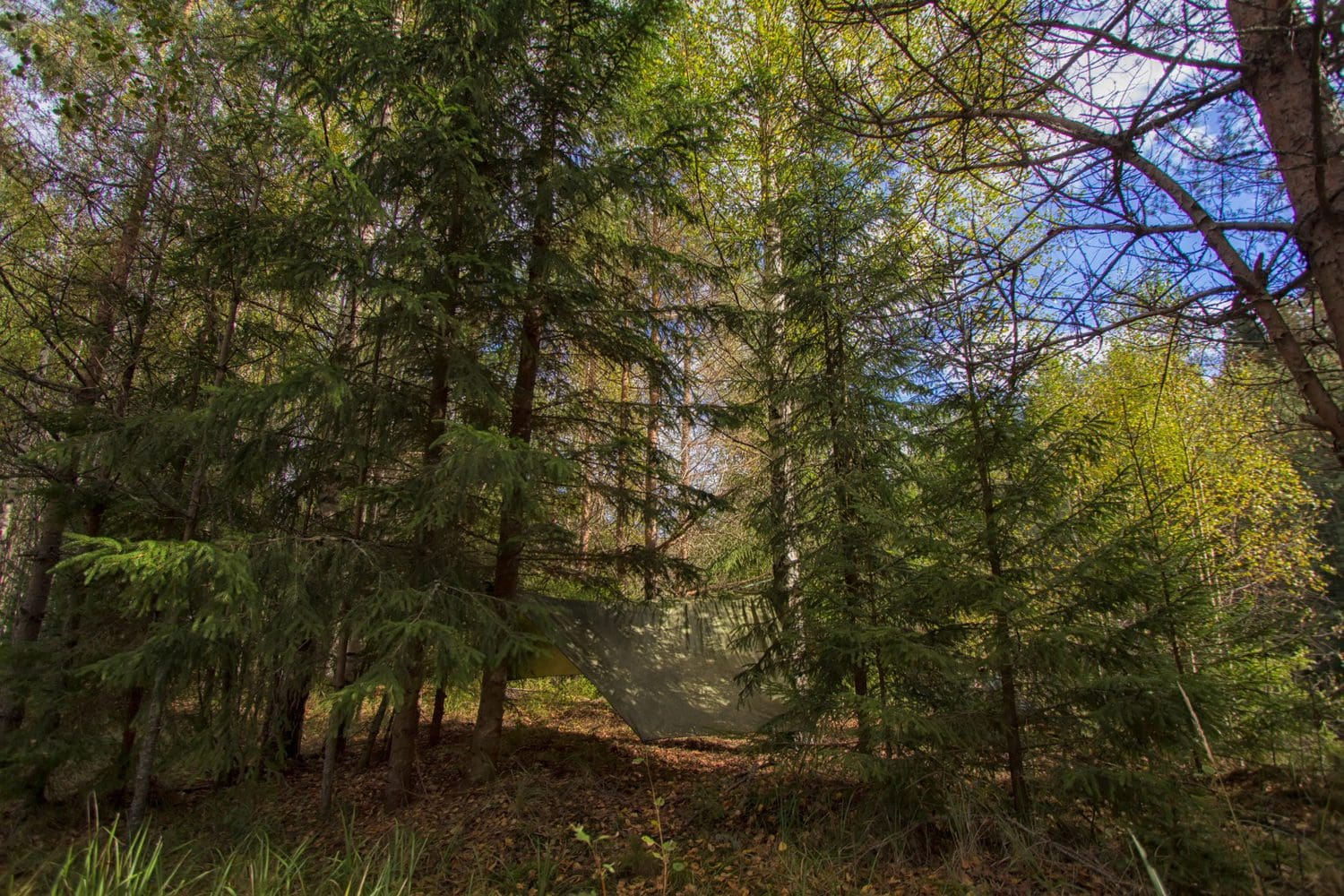 How To Get Privacy While Hammock Camping
